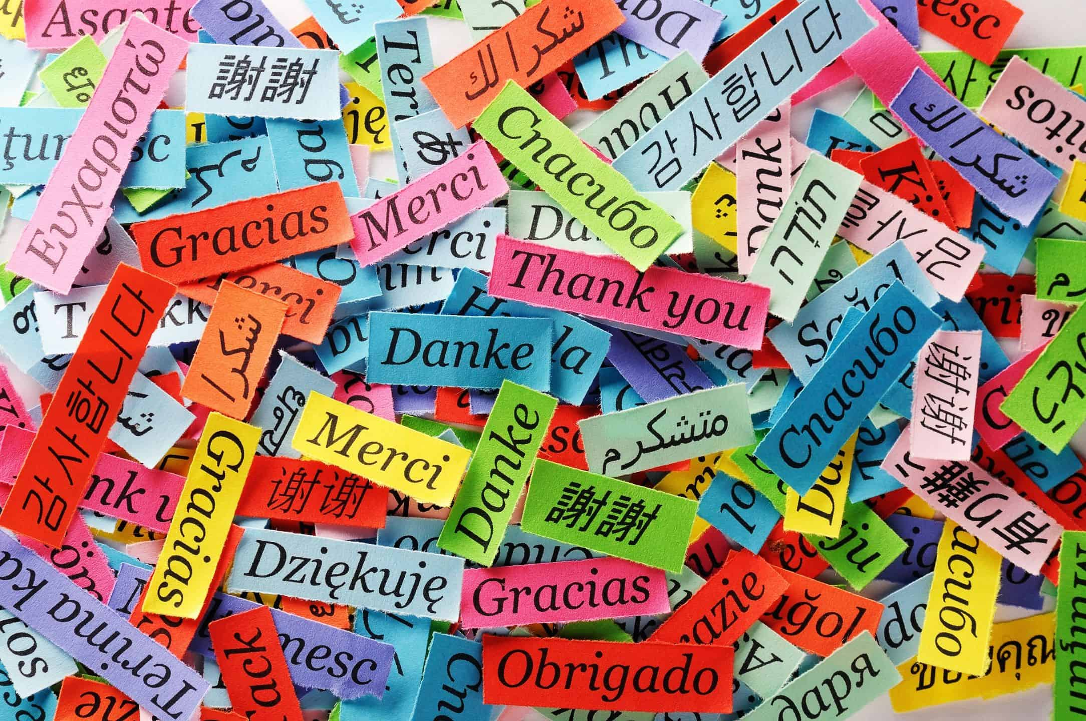 Thank you written in a range of languages on different colour paper scattered across a table
